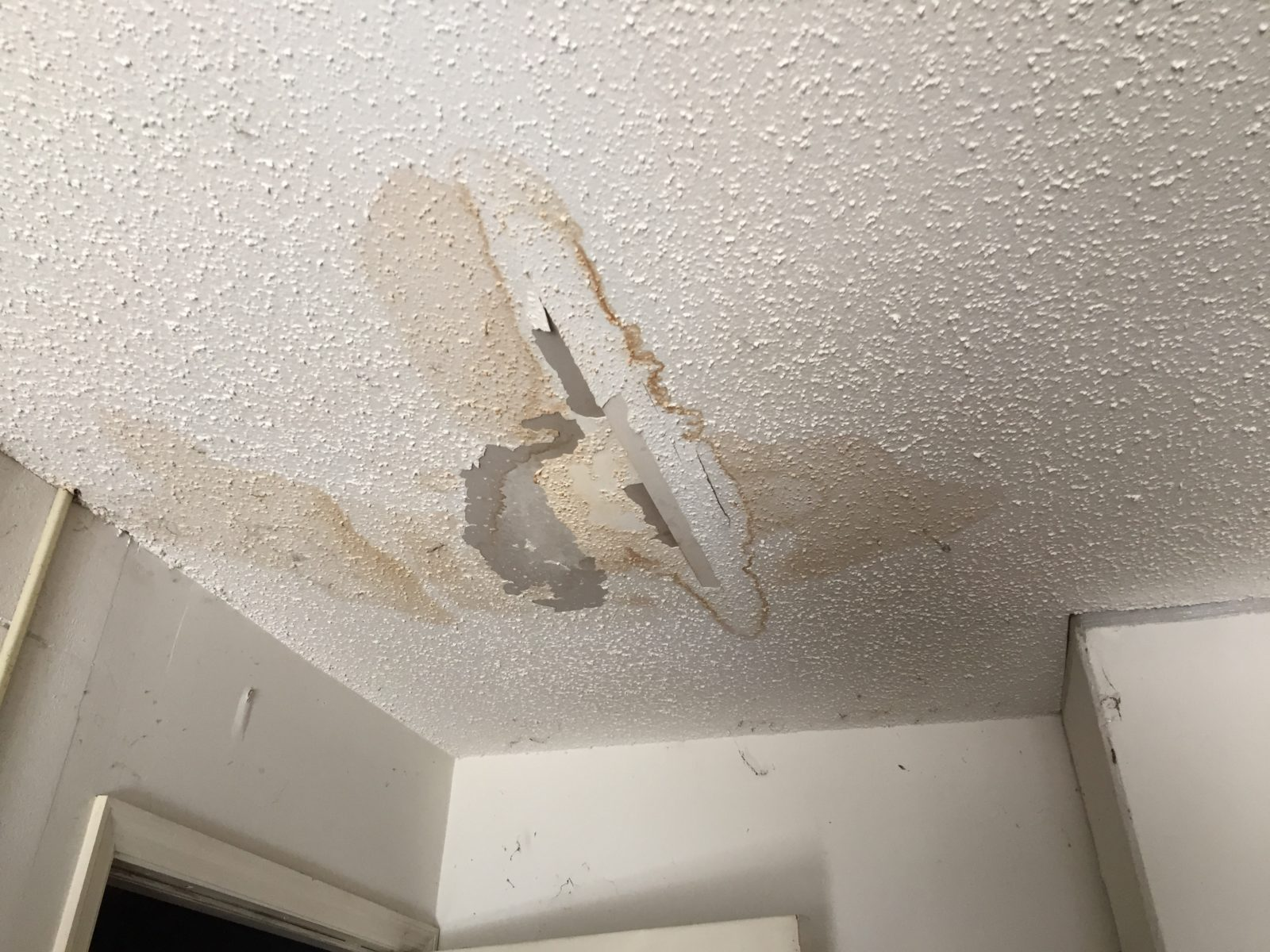Leaky Roof Photo Tampa Florida