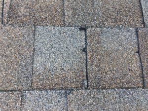 Missing Granules Cause Leaky Roof Photo Tampa, Florida